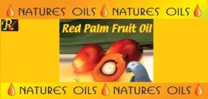 natures oils palm fruit oil website